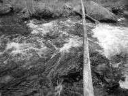 Szedłem lasem z Ivalo do Inari, bezdrożem pozbawionym nawet szlaków. Na drodze wyrastały rwące, dudniące strumienie, które trzeba było obchodzić i szukać łagodnych rozlewisk.