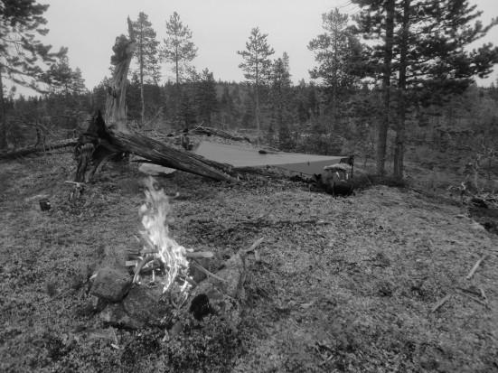 Na skraju dziczy rozbiłem obóz i rozpaliłem mokrym drewnem ogień. Nie miałem ze sobą żadnej kuchenki, więc jeśli chciałem jeść ciepły posiłek, musiałem polegać na ognisku. Bez względu na pogodę.