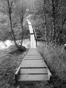 Wchodzę w park narodowy Kevo. Tam już jest szlak. Jestem zmęczony: psychicznie i fizycznie i szlak pozwala mi podróżować bez obawy o zagubienie, albo wplątanie się w niebezpieczny teren, bagna i urwiska. Ale... to już nie to samo. Schody, kładki, poręcze, wyznaczona trasa. Uczucie jest, jakby ktoś mi na powrót przykręcił dodatkowe kółeczka do roweru. Trudniej się wywrócić, ale frajda mniejsza.